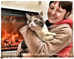 Tierpension In Meiner Nähe in ihrer Region Berlin Charlottenburg-Nord - IMG 8245 min - TIERHOTEL - TIERBETREUUNG - KATZENPENSION in der NÄHE - FREIGEHEGE für KATZEN - KATZENPENSION KOSTEN